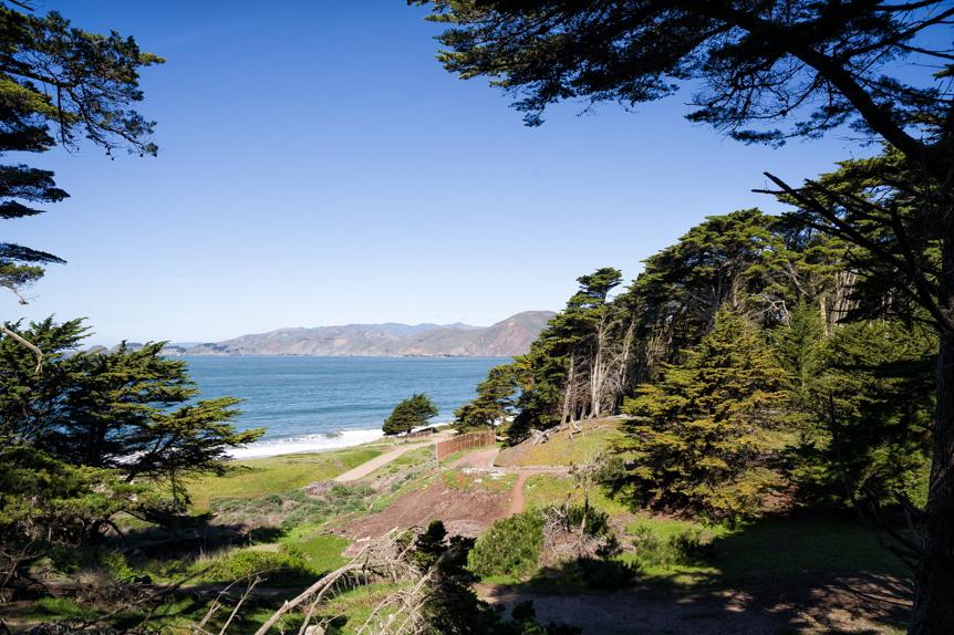 San_Francisco011