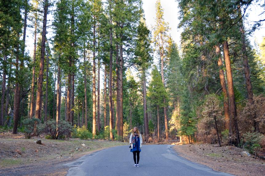 Yosemite008