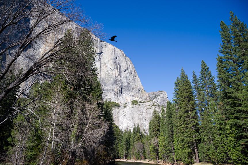 Yosemite028