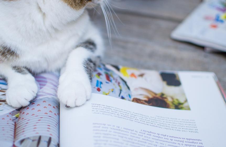 Magazines qui font du bien