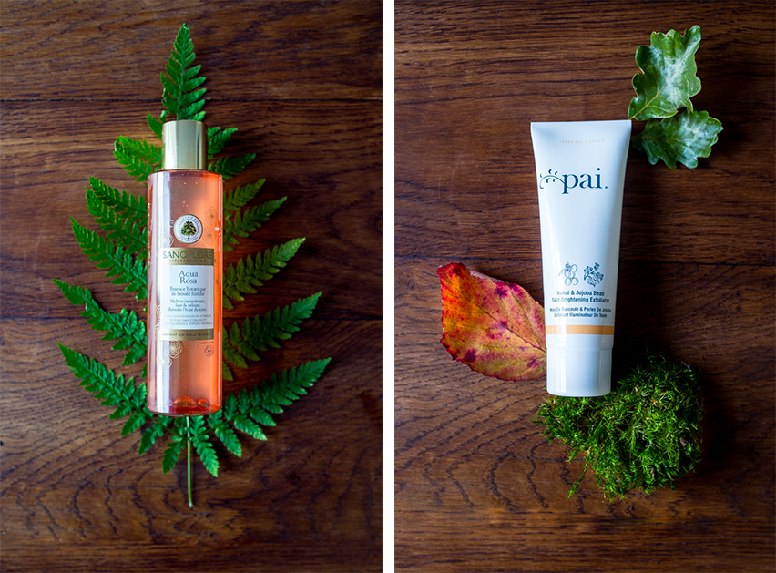 fall beauty treats